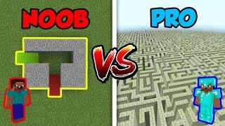 Minecraft NOOB vs. PRO: SECRET MAZE in Minecraft!