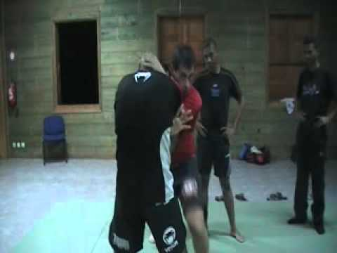 Jeet Kune Do entering to kicking to grappling Image 1