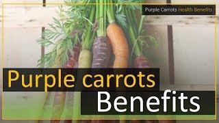 Purple Carrots Health Benefits