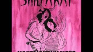 Watch Shilpa Ray Venus Shaver video