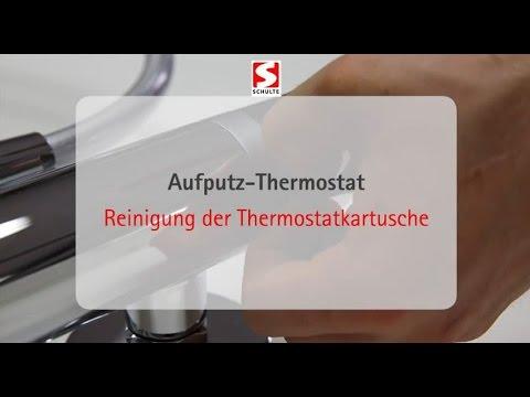 Anleitung zur Reinigung einer Thermostatkartusche | Schulte