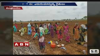 Mantralayam Sees Heavy Drought at Present  Kurnool District