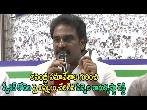 YSRCP MLA Pinnela Rama Krishna Reddy Comments On Assembly AP Meeting Speaker Kodel | Cinema Politics