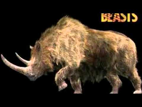 Carnivores: Ice Age Animals