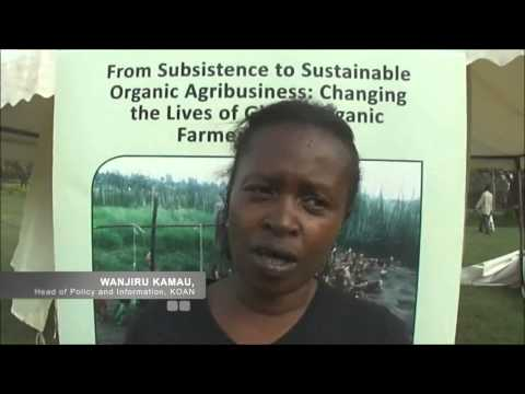 Why invest in organic agro-business in Kenya
