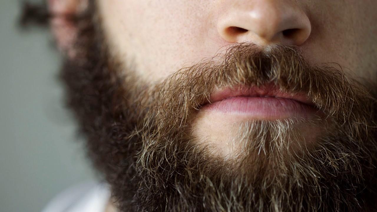 Все о выращивании бороды 84