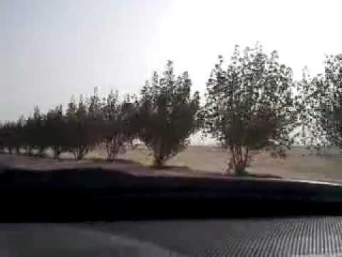 സി യം ആലുവ  റമളാന് 011 Qatar 2012 Radio 1269 AM