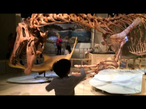 MJ's visit to the National Geographic Museum in Washington DC