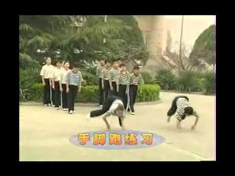 Basic Training Part TWO _ WUSHU Kung Fu - Fundamentals Image 1