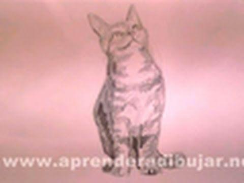 Dibujo Lapiz Gato un Gato Sentado a Lápiz