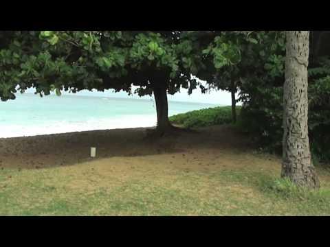 The Beach at The Westin Ka'anapali Ocean Resort Villas
