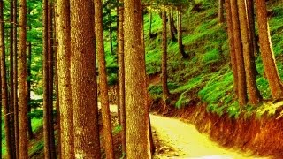 CHAMBA HIMACHAL PRADESH-THE VALLEY OF DIVINE BLISS-SID KUND MANI ROAD A LEGEND.