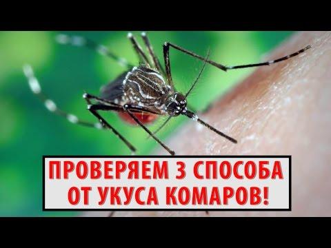 Как избавиться от зуда после укуса комара? Проверяем 3 СРЕДСТВА после укуса комаров!