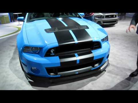 NEW 2013 Ford Shelby Cobra GT500 Racing Car