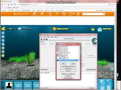 Аквамир взлом денег. Скачать читы на игру ВКонтакте аквамир 3д аквариум.