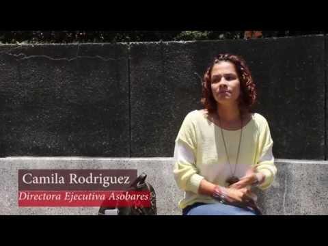 Contaminación Auditiva Cabalgatas Pereira.