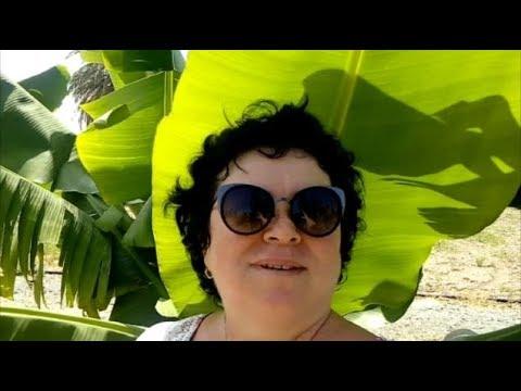 КИПР/завтрак,банановая плантация/разговор у моря