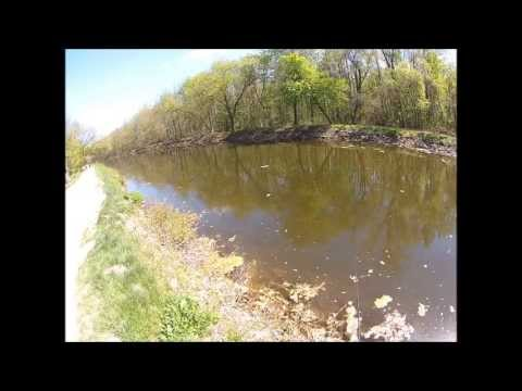 Fishing with Big Mike episode 11 pickerel
