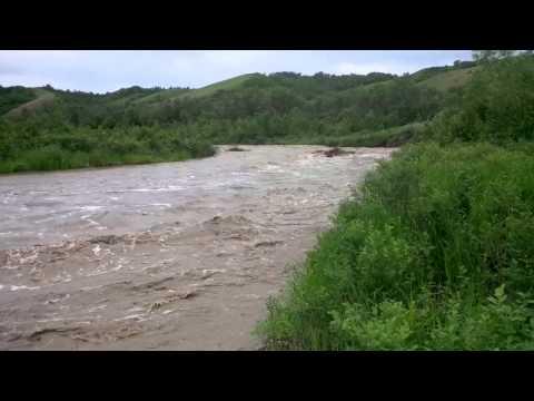 June 2014 run off, Wolf Creek