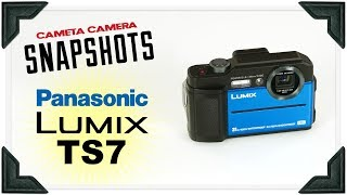 Cameta Camera SNAPSHOTS - Panasonic LUMIX TS7 Waterproof Digital Camera