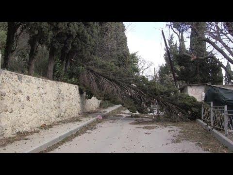 Последствия урагана 23-24 марта, на южном берегу Крыма.