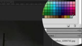 Photoshop Video Tutorial