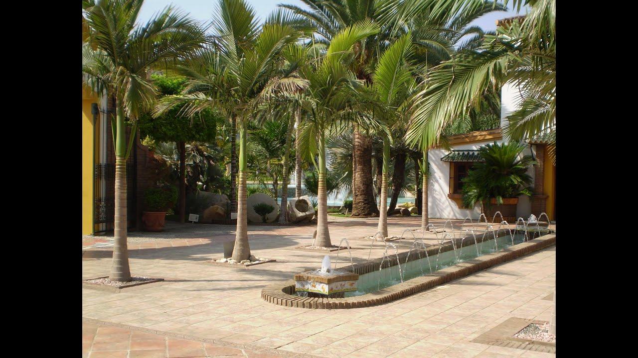 Jard n bot nico molino de inca torremolinos m laga 2013 for Jardin botanico de malaga