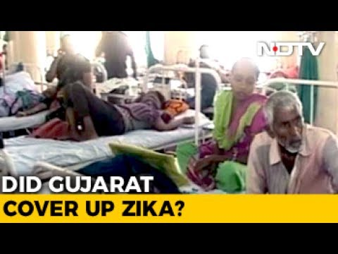 Gujarat Government Denies Cover-Up In Reporting Zika Cases