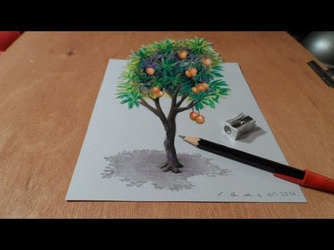 How I Draw A 3d Mango Tree, Trick Art, Time Lapse video