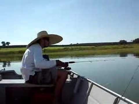 Meu esquema de pescar Tilápias Nativas