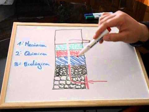 Como colocar la carga en el filtro de un acuario youtube for Como construir estanques para peces