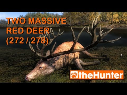 Two Massive Red Deer - theHunter PC Game