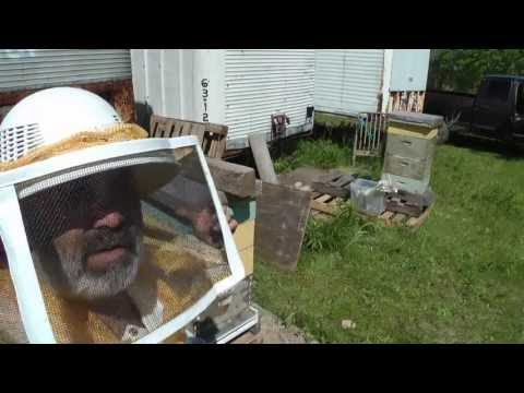Stop A Bee Hive From Swarming