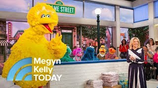 Meet Big Bird, Elmo And Other 'Sesame Street' Stars In Honor Of Its 48th Seasons | Megyn Kelly TODAY