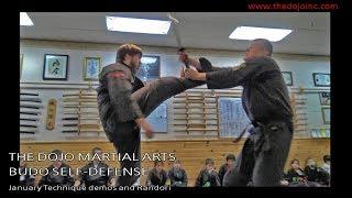 Martial Arts Demos and Randori - January Techniques