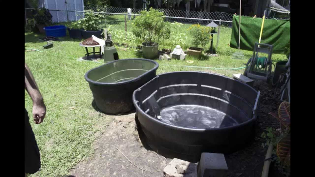 Above ground pond youtube for Above ground fish pond designs