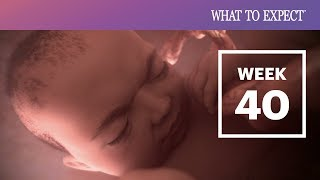 40 Weeks Pregnant | What To Expect