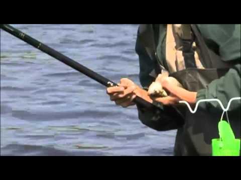 поплавочная ловля видео фильмы