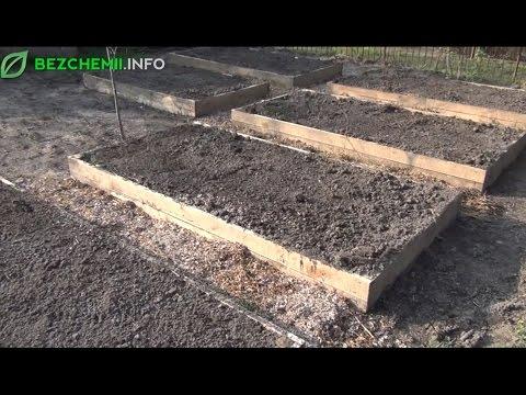 Budowanie Warzywnego Ogródka Od Podstaw: Jak Zrobić Grządki Podwyższone