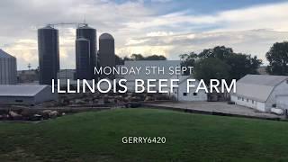 ILLINOIS BEEF FARM