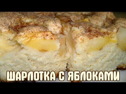 Самая вкусная шарлотка яблоками рецепт фото
