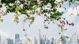 Panama Travel Film - Escape to Casco Viejo