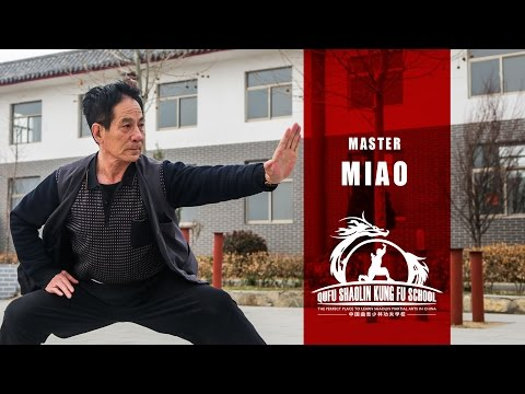 Master Miao - Real Martial Arts Master - Learn Traditional Martial Arts in China