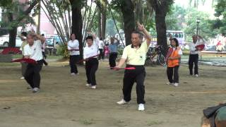 台南楊家秘傳太極拳-延年扇Yen Nien Fan for Tainan Tangjia Michuanquan