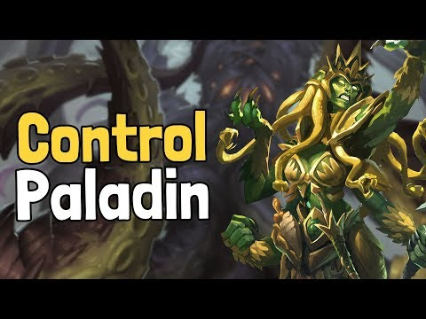 Control Paladin by TicTac Deck Spotlight - Hearthstone