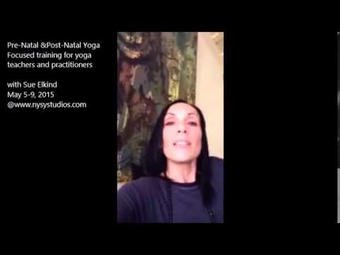 Sue Elkind introduces her Pre and Post-natal yoga TT program in Athens, Greece