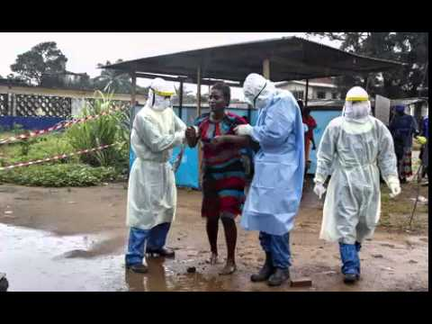 Bodies found after Ebola health workers go missing in Guinea