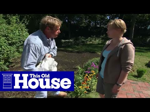 How to Maintain a Lawn Organically - This Old House