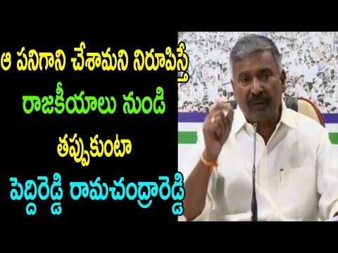 YSRCP MLA Peddi Reddy Rama Chandra Reddy Comments On TDP Govt AP Leaders Cases | Cinema Politics