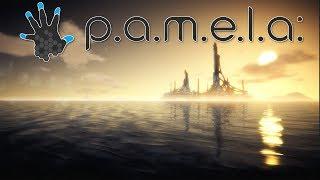 P.A.M.E.L.A | Livestream